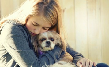 Köpekler depresyona girer mi?
