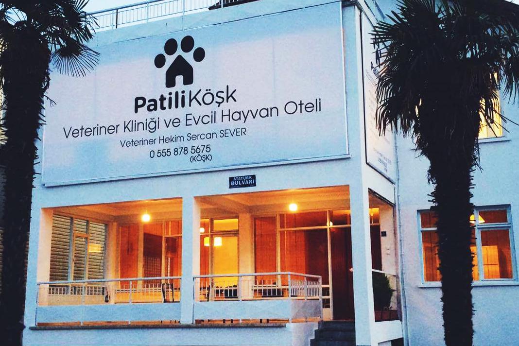 Samsun'un sevgi dolu kliniği ve pet oteli; Patili Köşk