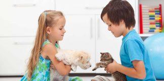 Kedi sahibi ile köpek sahibi arasındaki farklar