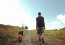 Ricky en iyi yoldaşım- Alkan Yıldırım