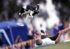 Yetenekli köpekler Disc Dog Challenge Türkiye'de yarışıyor!