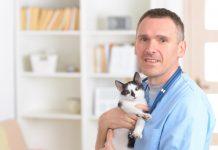Royal Canin'den anlamlı proje: #KedimKlinikte