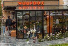 Wuufbox Daycare&Spa açıldı!