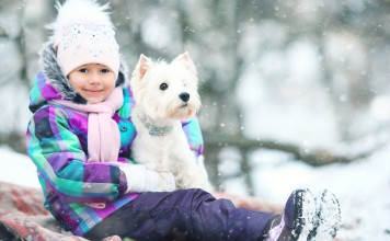 Kış koşullarına ayak uydurmak…