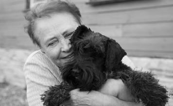 Yaşlı köpek sahiplenmenin güzelliği!