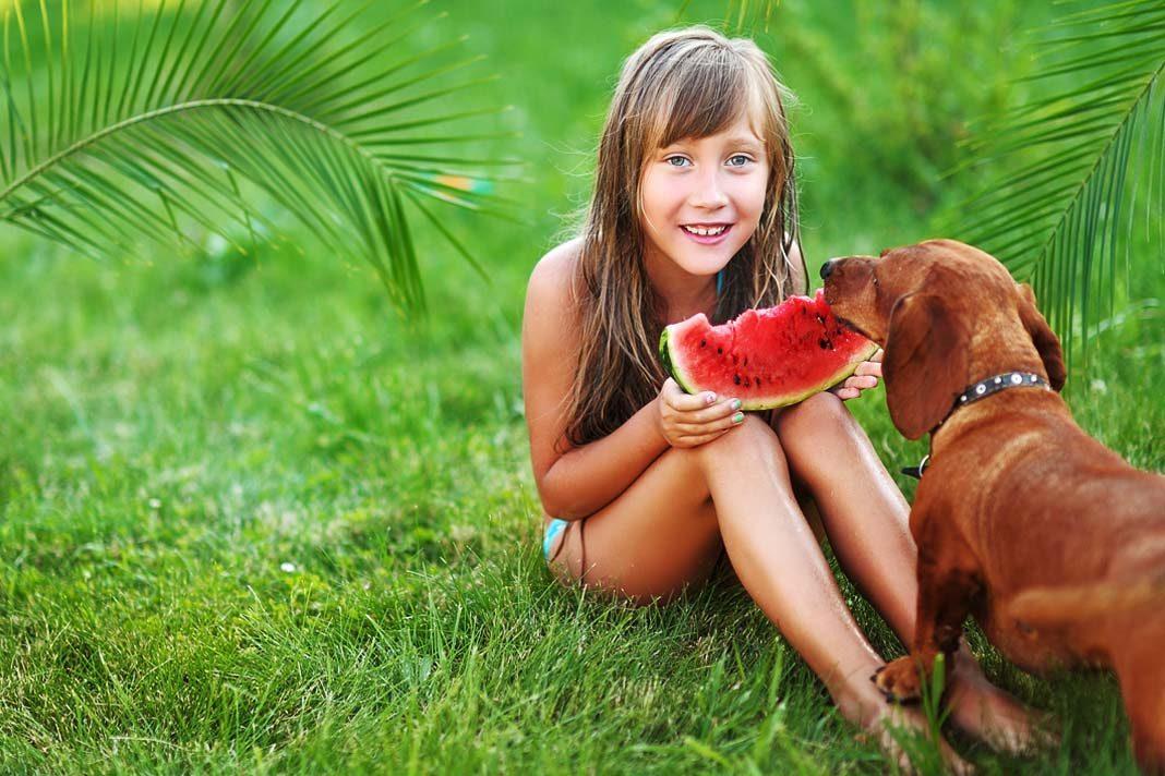 Köpekler karpuz yiyebilir mi?