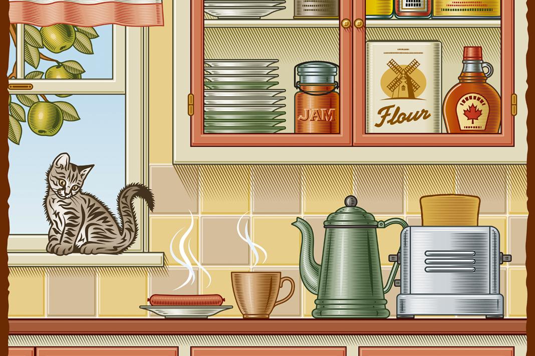 Her yere zıplayan kediler için dikkat edilmesi gerekenler