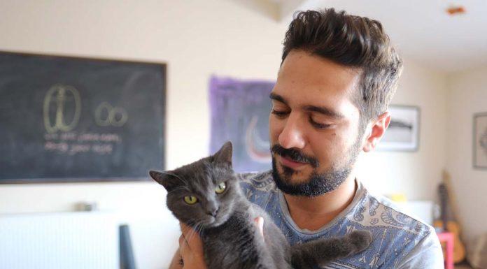 Hayvanların özellikle kedilerin enerjisi çok başka- Anıl Çelik