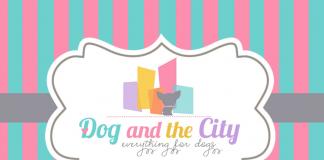 Hayal gibi ürünler için; Dog and The City