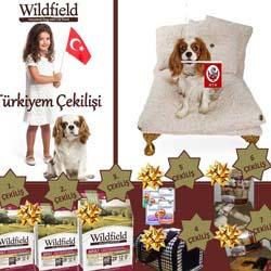 Cavalier King Charles-Wildfield Türkiyem çekilişi açıklandı!
