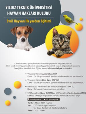 Kaçırılmayacak etkinlik- Evcil Hayvan İlkyardım Eğitimi