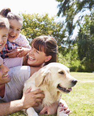 Köpeklerin yaşı nasıl hesaplanır?